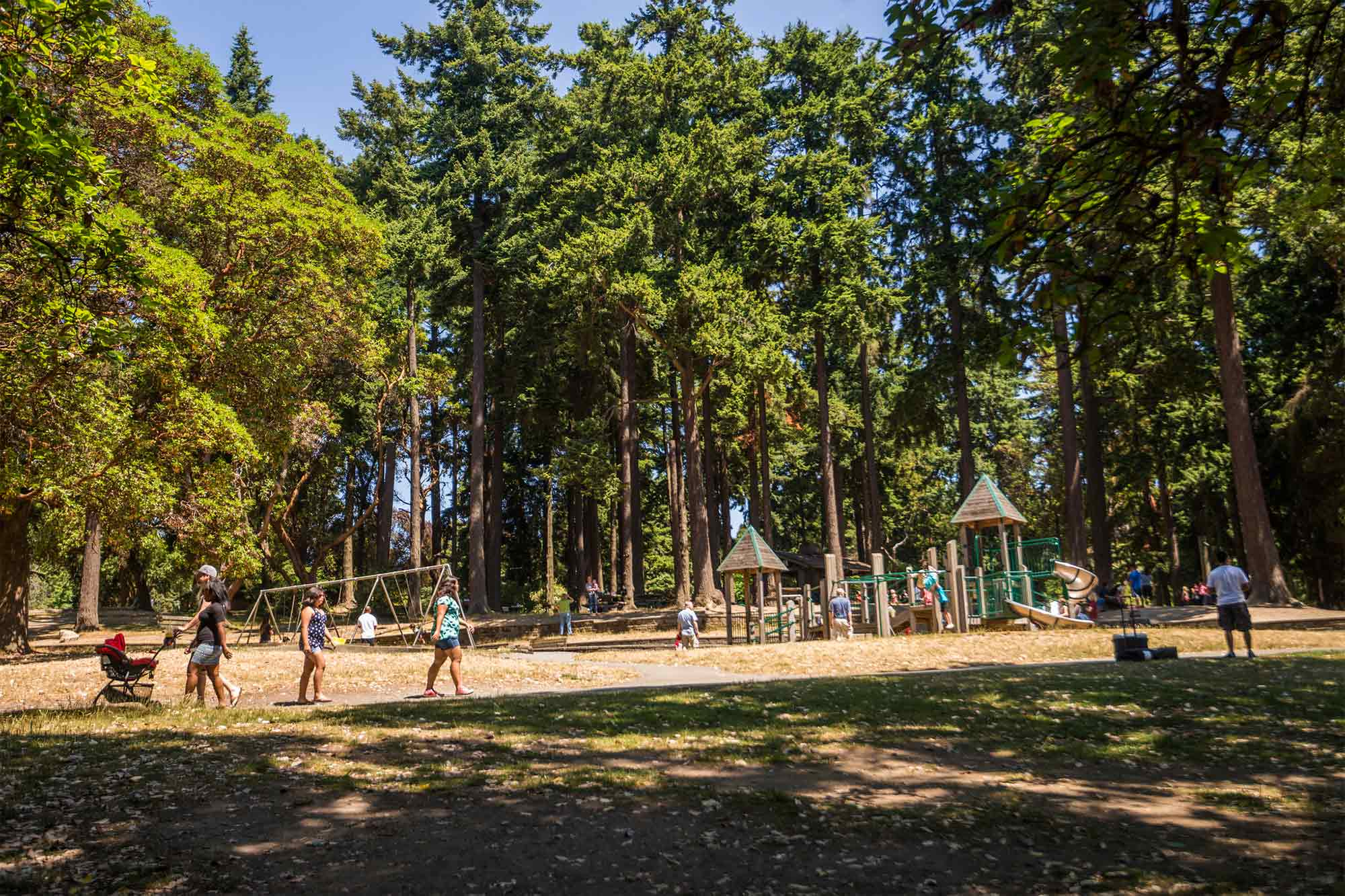 Lincoln Park Seattle